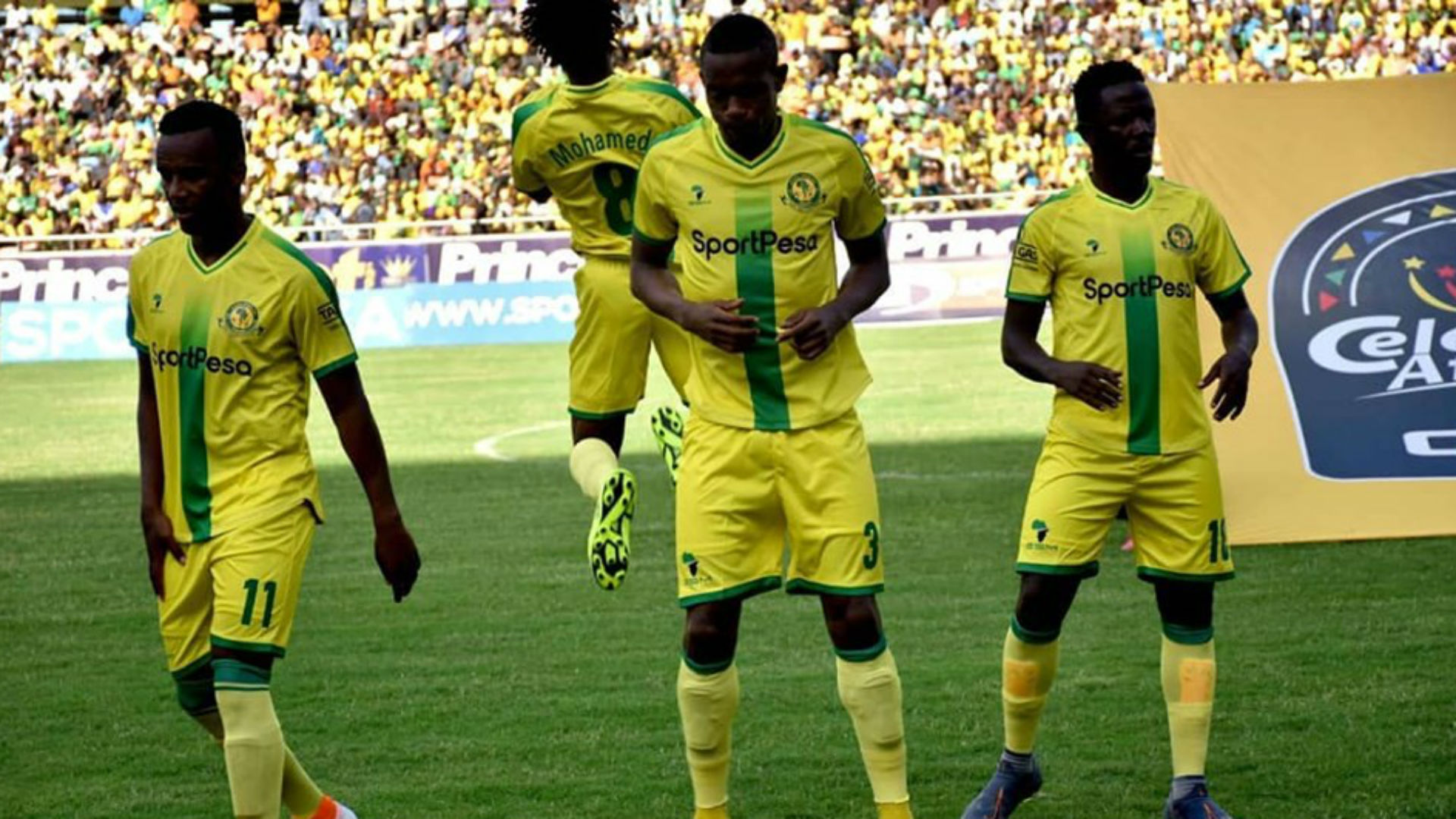 Eymael: I don't know whether Yanga SC players are taking training seriously