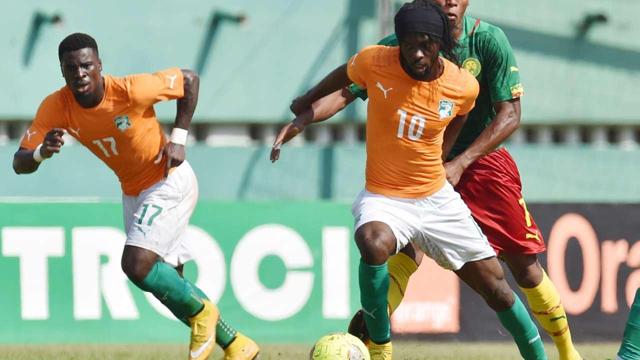 Gervinho Ivory Coast pitch invasion Afcon Cameroon 19112014