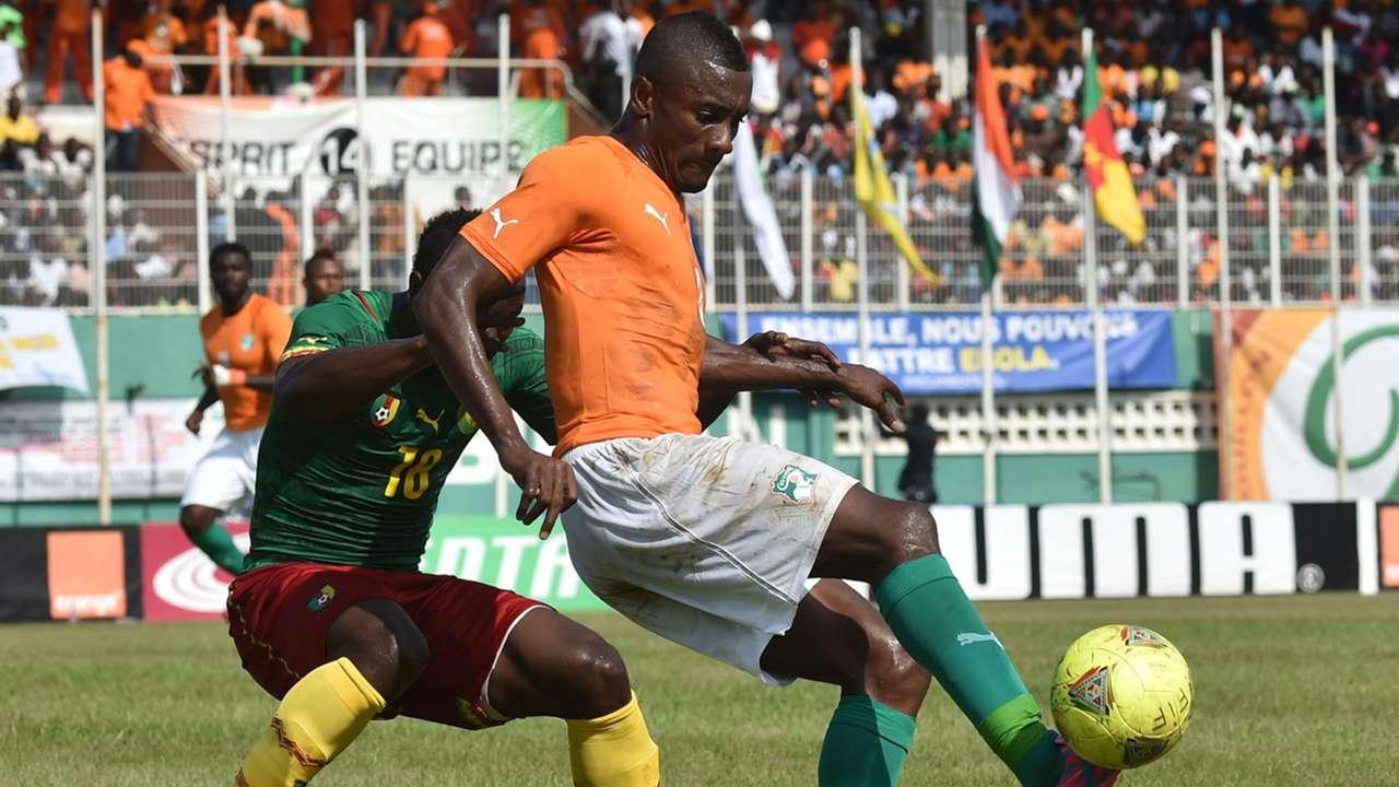 Salomon Kalou Ivory Coast pitch invasion Afcon Cameroon 19112014