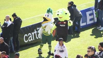 Mascotes Bayer Leverkusen e Tampa Rowdies Florida Cup 08 01 17