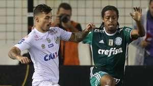 Zeca Keno Santos Palmeiras Paulista 19032017