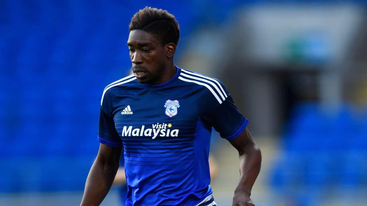 Sammy Ameobi of Cardiff City