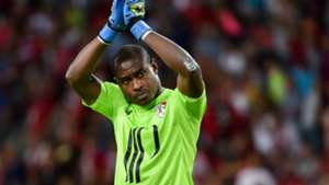 Vincent Enyeama of Lille