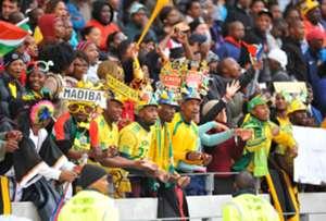 Bafana Bafana fans at the Cape Town Stadium