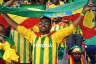 Ethiopia fan waves the national flag Addis Ababa 13102013