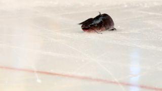 Catfish on ice