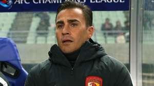 Cannavaro-cropped