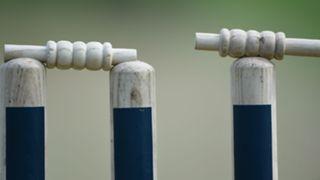 Cricketstumpscropped
