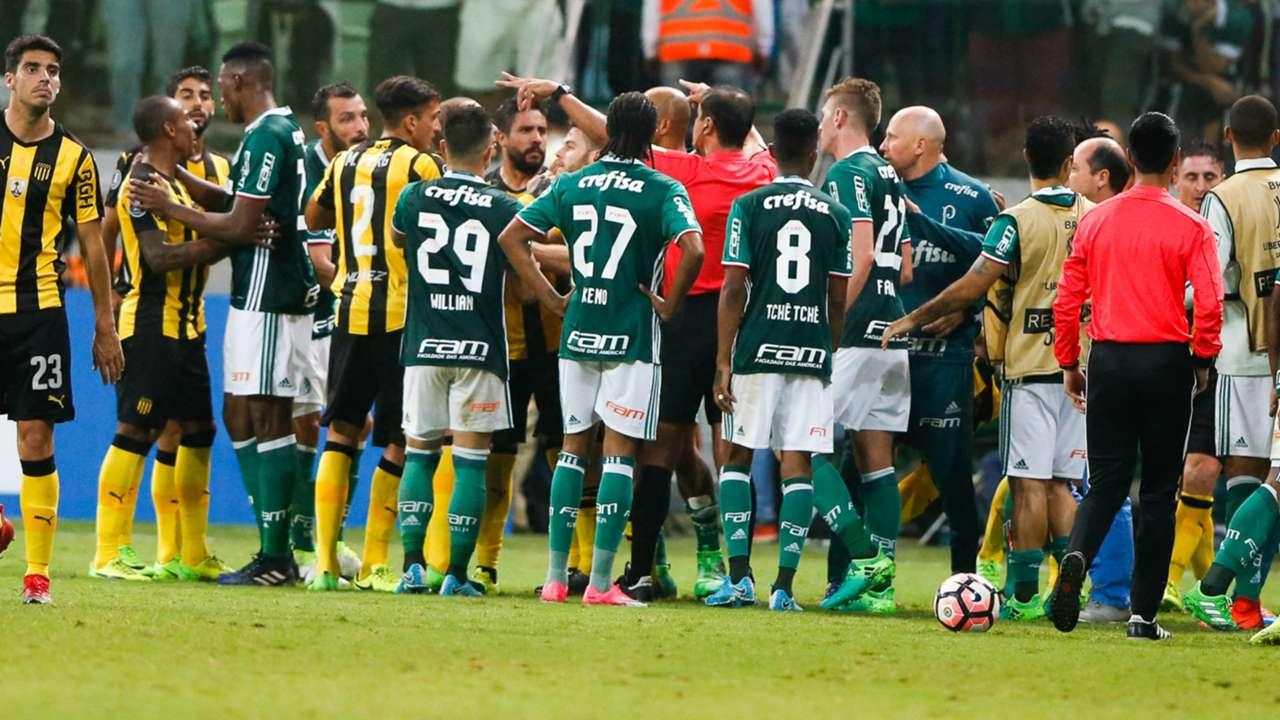 Palmeiras-cropped