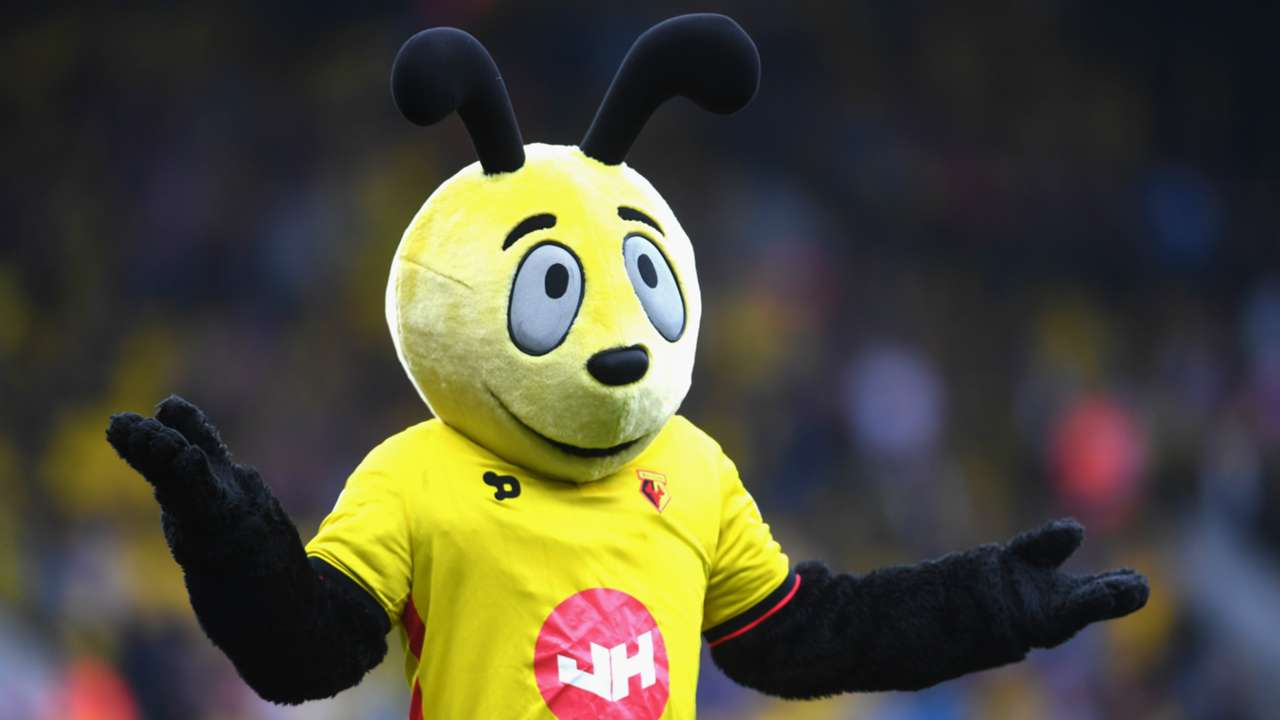 harry the hornet - cropped