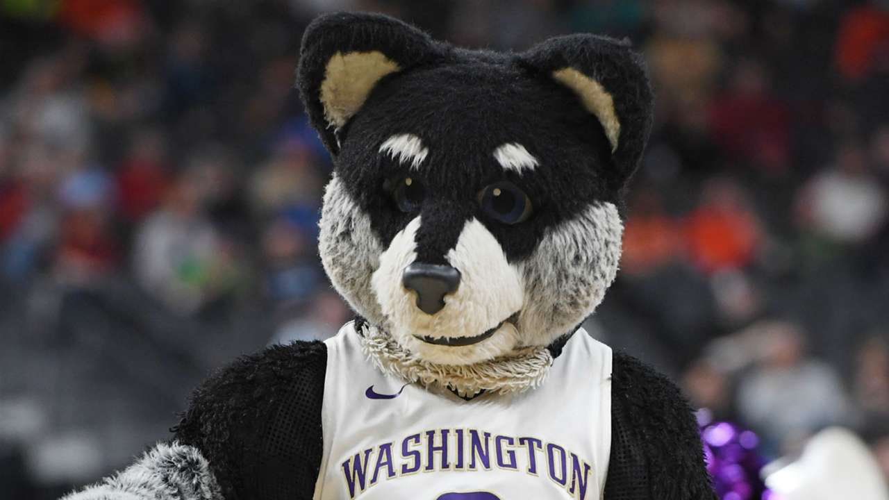 washington-huskies-mascot-11102018-usnews-getty-ftr
