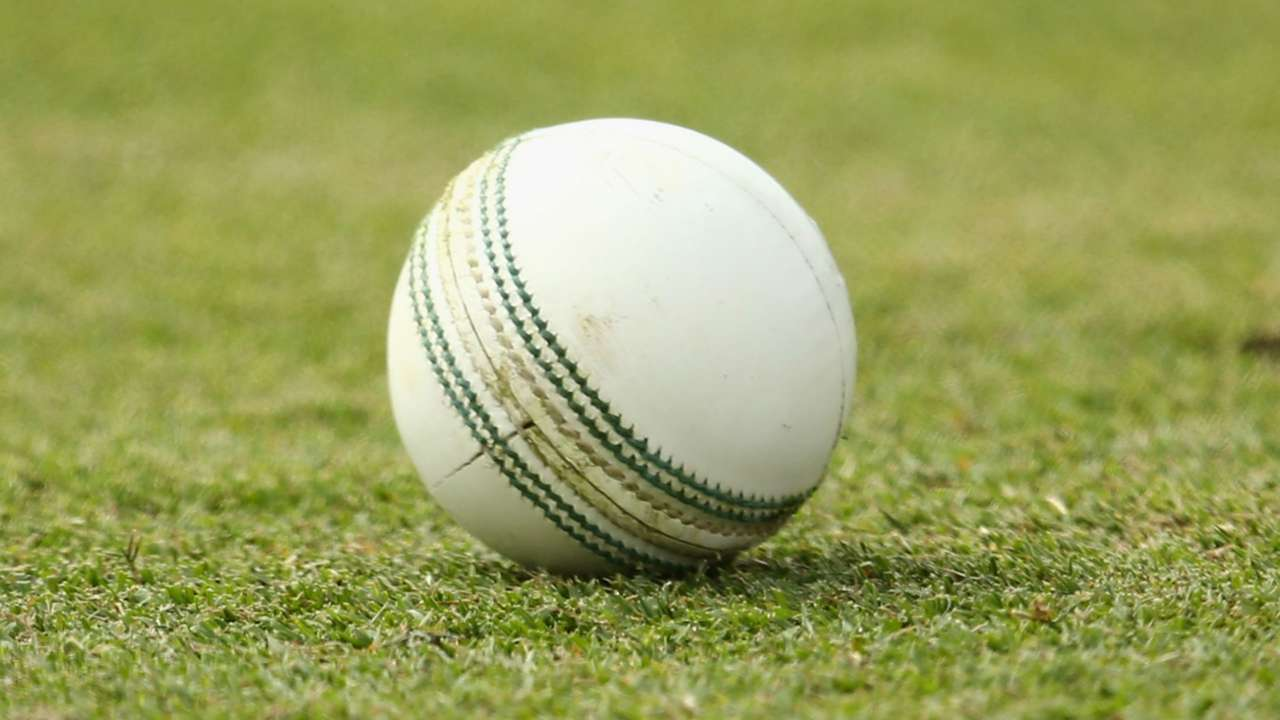 Cricket ball - cropped