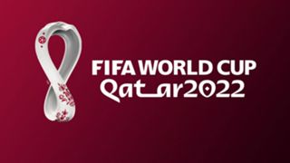 world cup 2022 - cropped