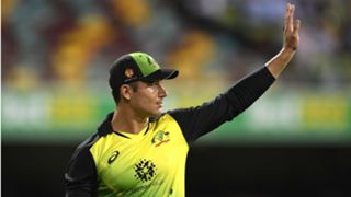 stoinis - CROPPED
