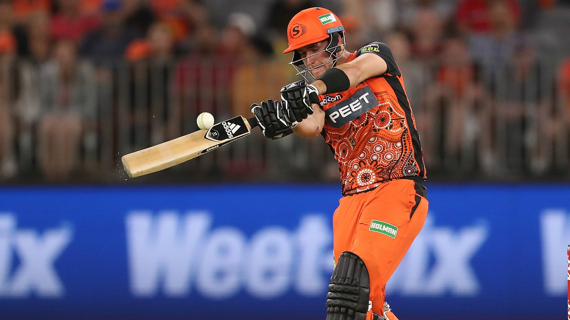 Livingstone answers Hales as Perth Scorchers move above ...