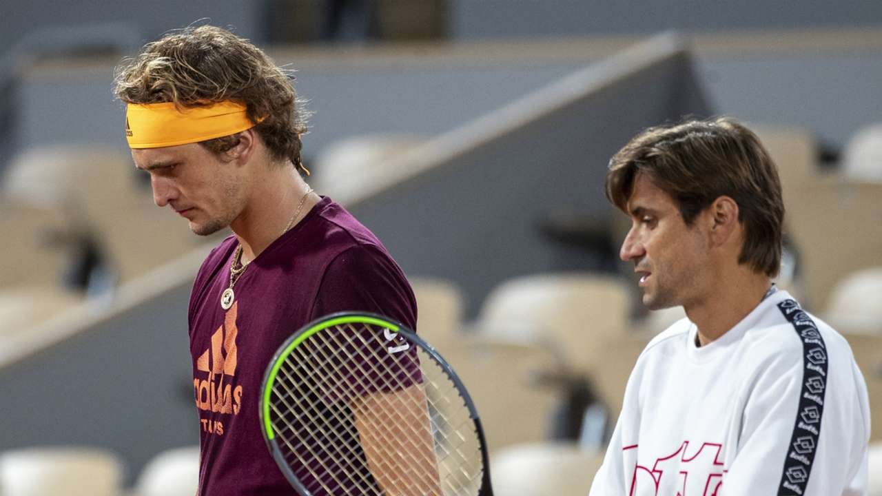 Alexander Zverev and David Ferrer