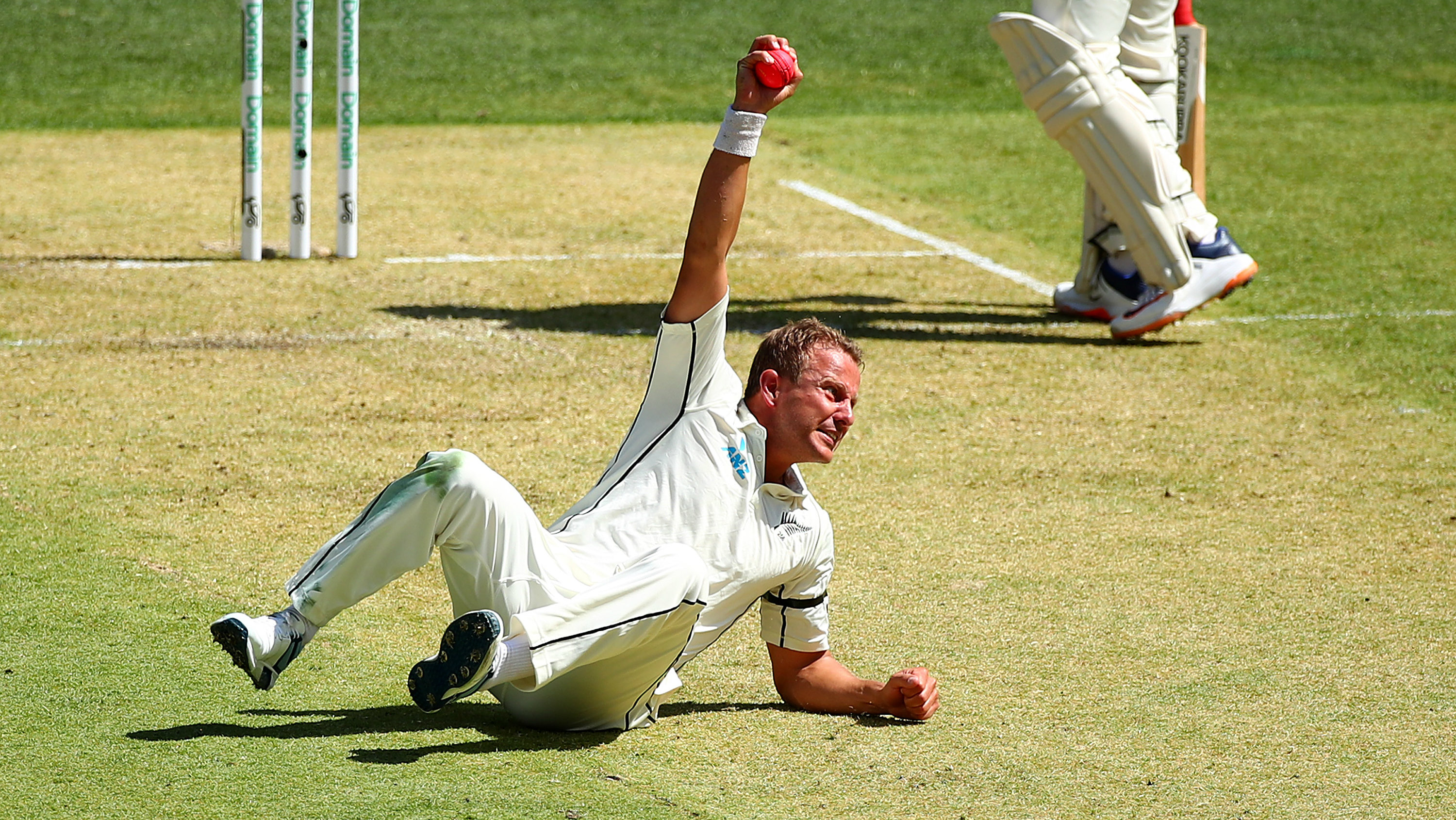 Australia v New Zealand: Neil Wagner takes incredible catch to dismiss David Warner
