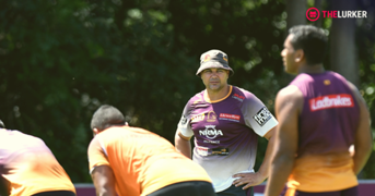 Anthony Seibold Brisbane Lurker