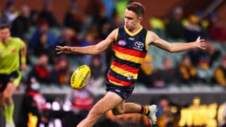Lachlan Sholl Adelaide