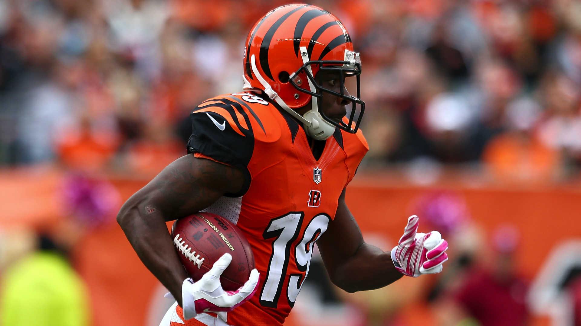 Bengals' Brandon Tate grabs beautiful, diving touchdown catch ...