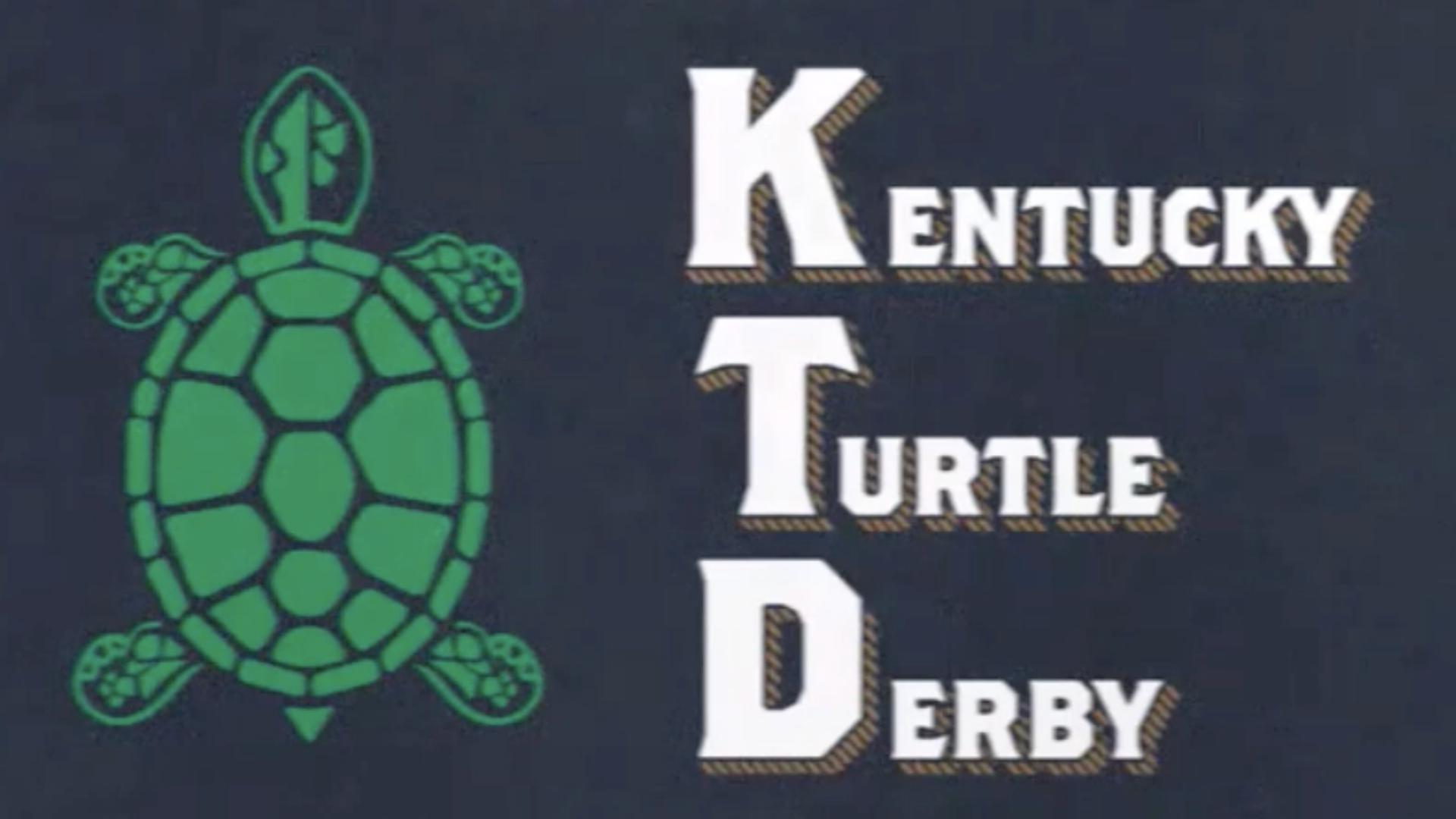 The Slowest Eight Minutes in Sports: How a turtle derby will replace the Kentucky Derby