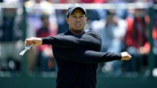 130 Tiger Woods