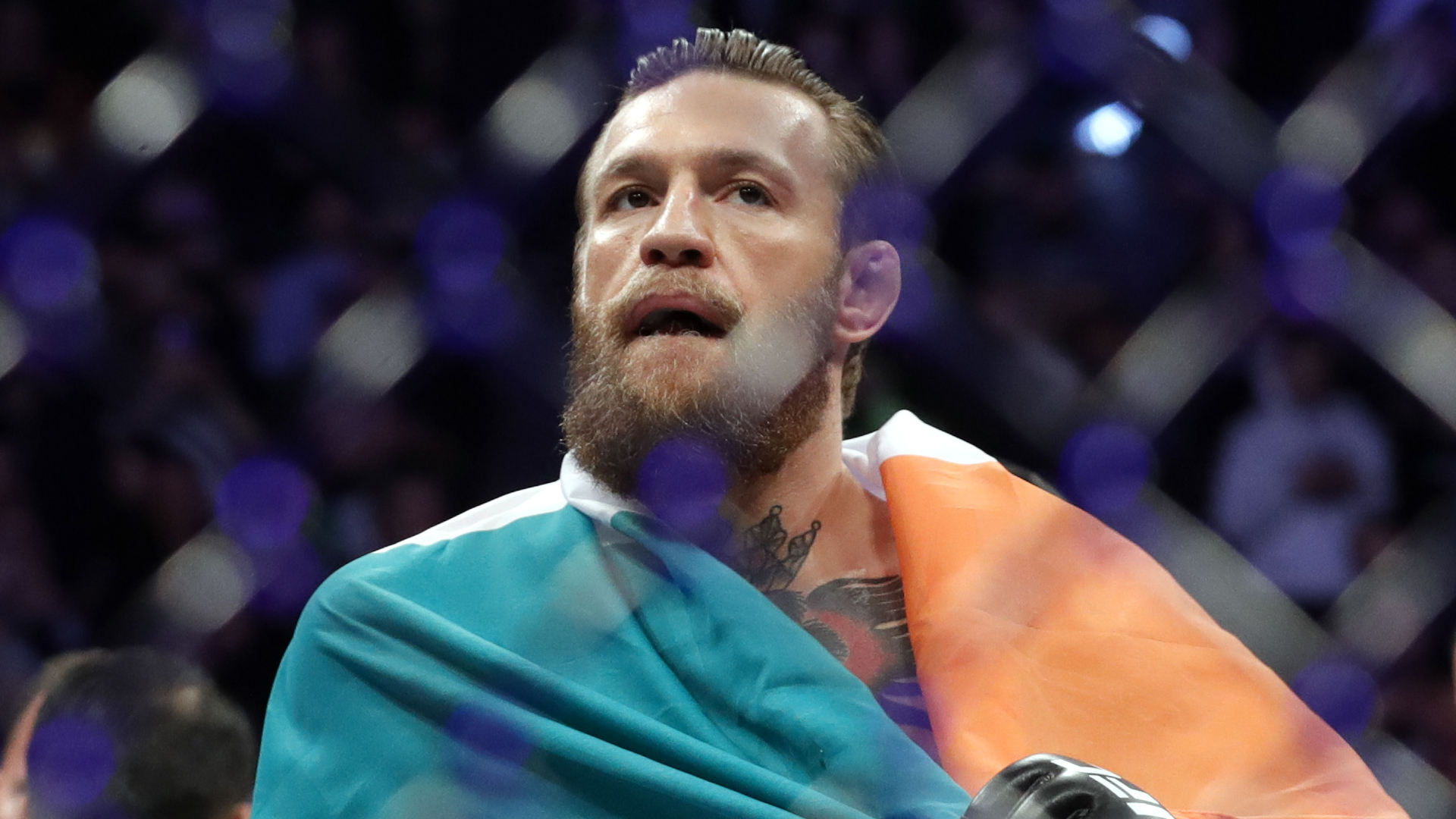 ufc betting trends for monday
