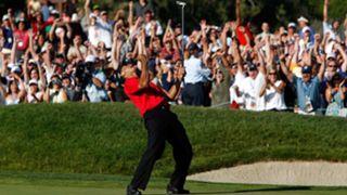87 Tiger Woods