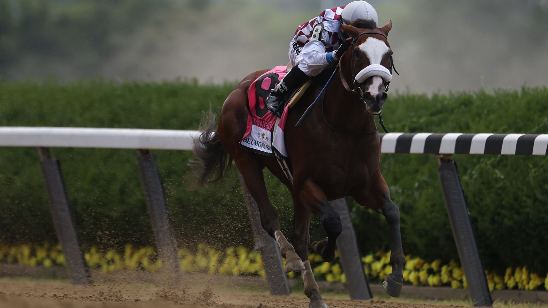 Who won the Belmont Stakes in 2020? Full results, finish order & highlights from the race