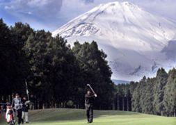 5L Tiger Woods