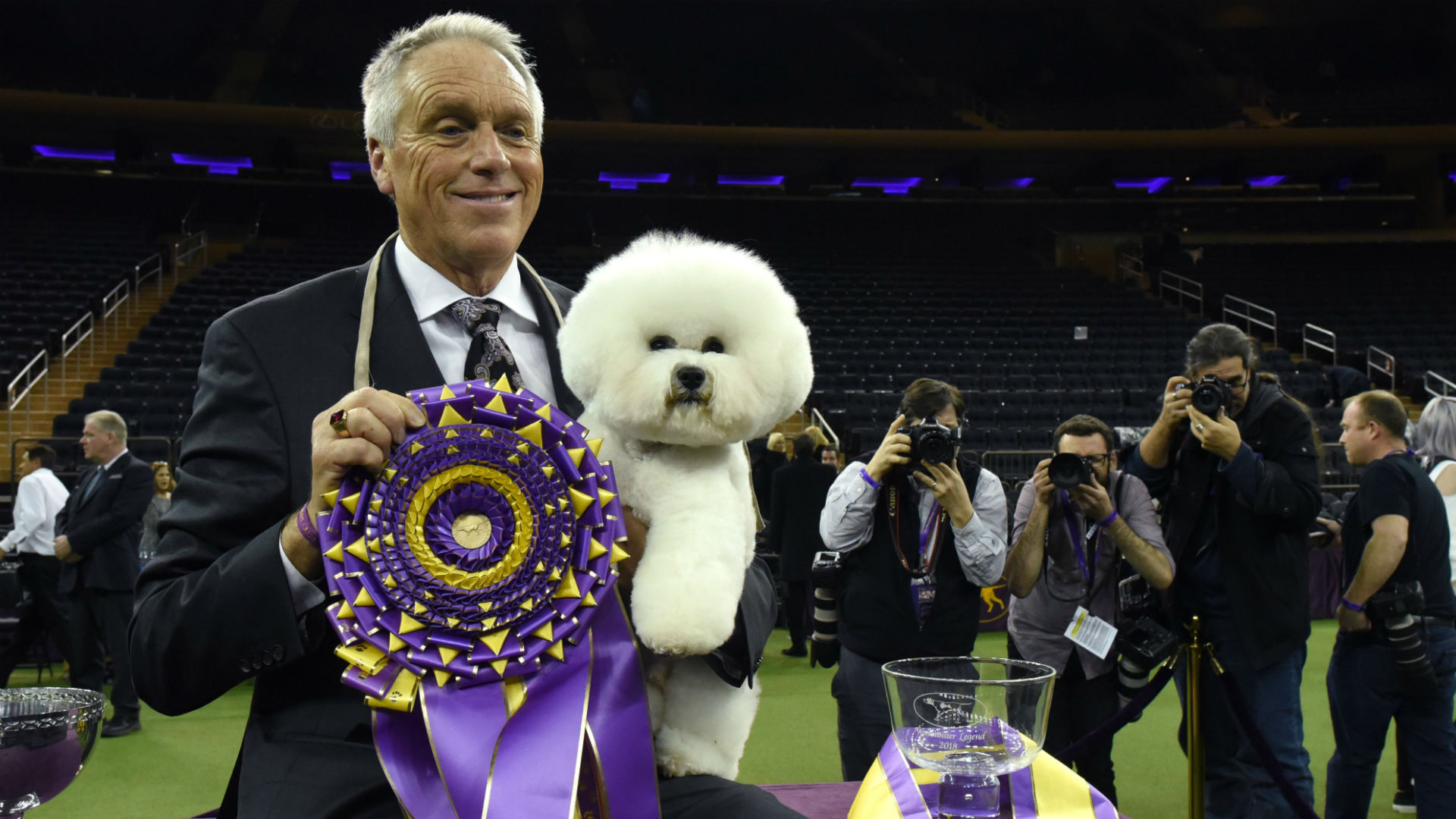 Westminster Dog Show 2020 Dates.Westminster Dog Show 2019 Dates Tv Schedule Live Stream