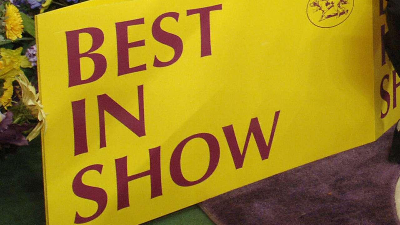Dog-show-file-061321-Getty-FTR.jpg