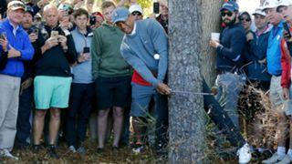 153  Tiger Woods