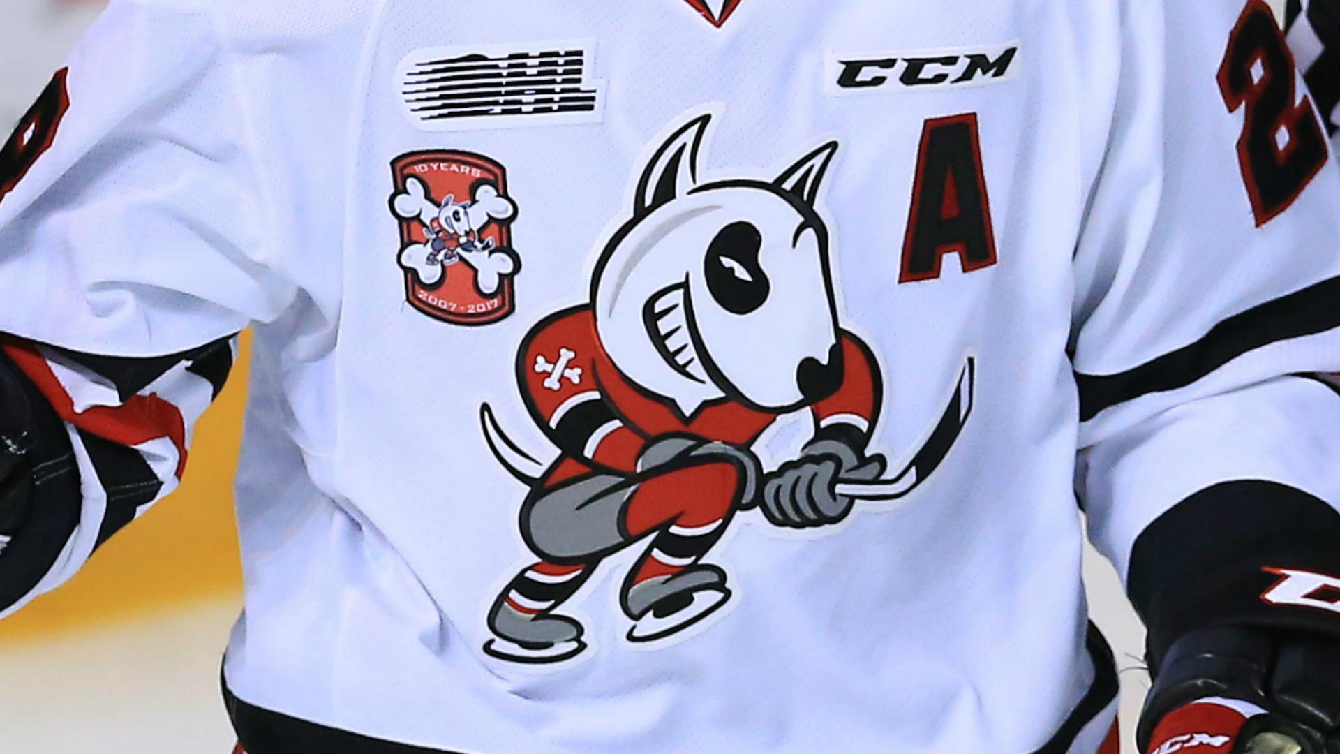 Niagara IceDogs goalie Tucker Tynan thanks supporters following severe leg injury