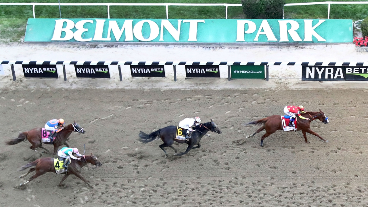 Betting odds belmont stakes 2021odds live horse racing odds betting odds