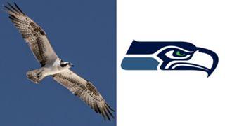 ANIMALS-Seahawks-061516-GETTY-FTR.jpg
