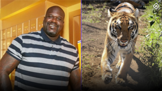 Shaquille-O'Neal-Tiger-Getty-033020-FTR