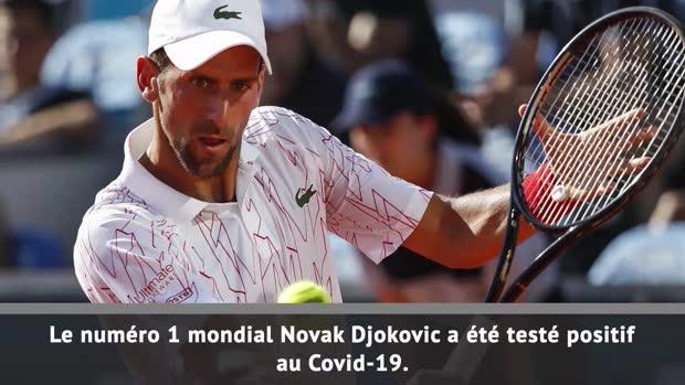 : ATP - Djokovic testé positif au Covid-19